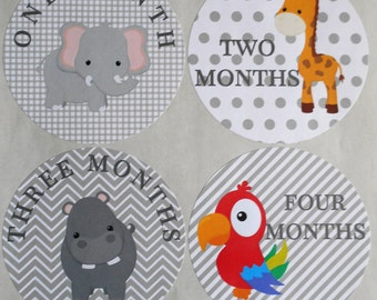 Monthly Bodysuit Stickers-JUNGLE THEMED-set of 12 & 1st. Birthday