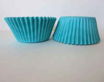 48 Teal Aqua Standard Cupcake Liners Paper Baking Cups Cake Cupcake Decorations Jenuine Crafts