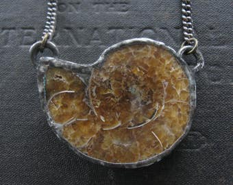 Ammonite Fossil Necklace - Fossilized Snail in Silver Setting with Vintage Copper Chain