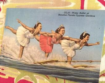 Vintage Florida postcard Cypress Gardens Aqua Maids pyramid ballet waterski waterskiing skiers souvenir 1950s Floridiana kitsch