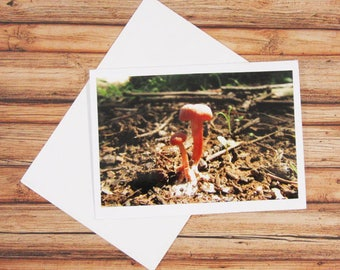 Red Toadstool Fungus Greeting Card 4x6' with handmade envelope  - Greeting Card - Photo card - Thank you card