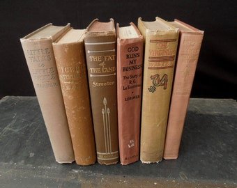 Books by Color Vintage - Book Bundle Clay Terracotta Tan Books for Decor - Instant Library