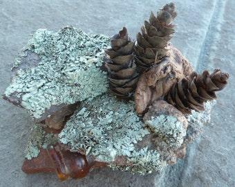 Garden Rock Art, Miniature Sculptures, Zen Rock Garden Sculpture, Mountain Glass Art, Table Art, Mother Nature Art