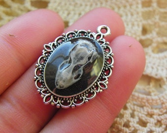 Cruelty Free Real Banded Gecko Skull Resin Pendant No. 1 - 25
