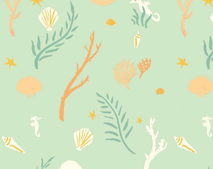 Organic KNIT Fabric - Birch Saltwater Knits - Flotsam & Jetsam Seamint Knit