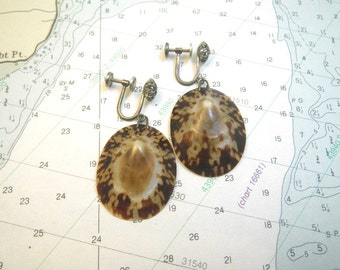 Limpet Shell Earrings with Vintage Sterling Silver Screwback Findings