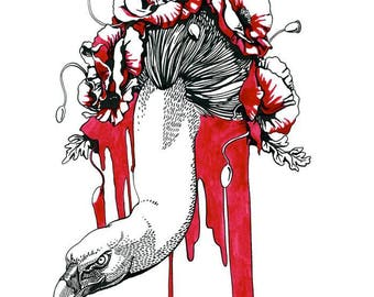 From Death Comes Life - Black and Red ink drawing of Vulture and poppies on white paper giclee print reproduction