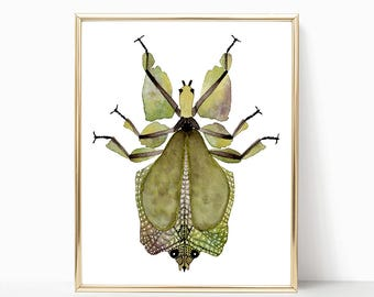 Leaf Bug print watercolor painting nature 5 x 7 ; 8 x 10