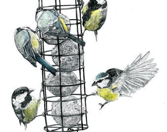 Print - The Bird Feeder - Pencil Drawing