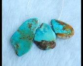 3 PCS Turquoise Gemstone Pendant Bead Set,32x17x3mm,20x13x3mm,6.2g(c0510)
