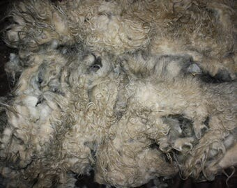 RawCo. Beautiful Whole Icelandic Fleece