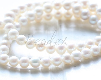 One Full Strand / Natural Fresh Water Pearl / 5mm (#23)