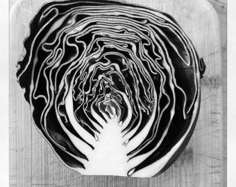 Photography, black and white, art, print