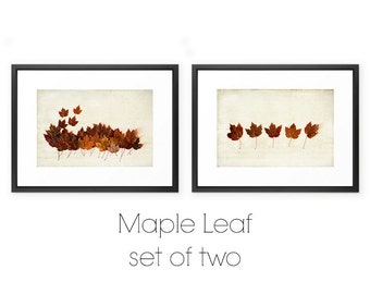 Maple Leaf Photography- Two Print Set, Autumn Maple Leaves Print Set, Nature Still Life Prints, Orange Red Brown Autumn Decor, Fall Leaves
