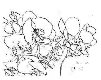 Inked Orchids - Ink Sketch, Ink Drawing, Pen and Ink, Black and White, Fine Art Print, Giclee, Original Art, Floral, Flowers, Bouquet
