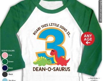 Dinosaur Birthday Shirt or Bodysuit - Raglan Personalized Dinosaur First Birthday Shirt - Dinosaur 1st Birthday Shirt