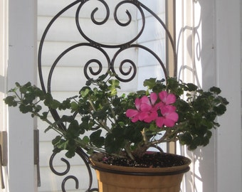 French Window Sconce