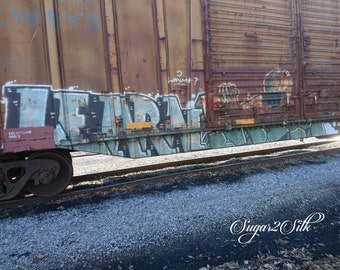 Graffiti Train Car Print or Backdrop Angle 1