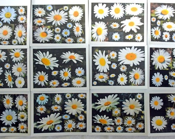 Daisy Collage Smiling at You - Notecards