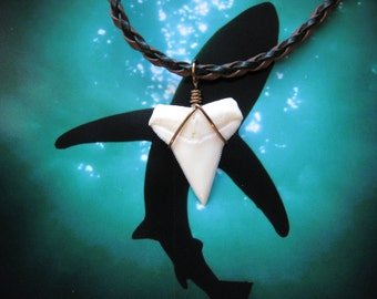 Shark Tooth Necklace, Modern Day White Shark tooth, Braided leather, Bronze wire wrapped
