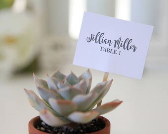 Escort Cards / Weddings / Chic / Planter labels / Succulent Weddings / Seating