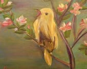 YELLOW SONGBIRD, 12 X 12 ...