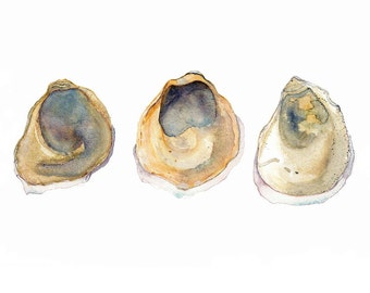 Oysters Watercolour Print, Australian Coastal Southern Flat Oyster, A3 Shell Painting, Beach Wall Decor, Neutral Artwork
