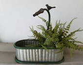 Galvanized Planter with Fern Planter with Green Edges hose with perched bird