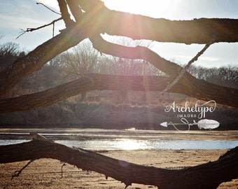 Digital Download {Fallen Friend} Sandy Creek Rural Nebraska Photography
