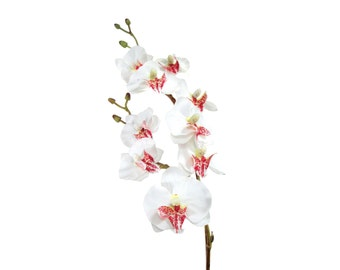 "17"" Artificial Silk Butterfly Phalaenopsis Orchid Flower Spray - White"