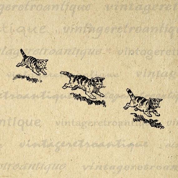 Printable Digital Three Kittens Image Cute Cat Download Illustration Graphic Vintage Clip Art Jpg Png Eps  HQ 300dpi No.3579