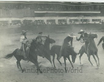 Mexico rodeo men on horses with lasso antique photo