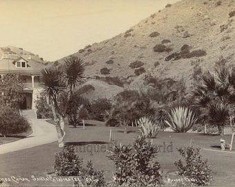 Descanso Canyon Santa Catalina Islands view antique photo by Munsey