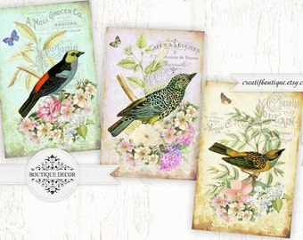 Vintage Birds ATC/ACEO. Set of 3 cards 6x9 cm. Vintage French tags. Digital collage sheet for scrapbooking or packaging.