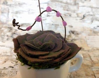 Wool Felt Succulent Arrangement in a Tiny Teacup