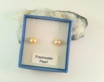 Golden Freshwater Pearl Stud Button Earrings Sterling Silver 6-7mm