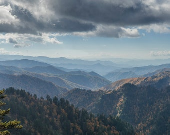 The Smokies #2 - GSMNP - Great Smoky Mountains National Park - Nature - Hiking - Fine Art - Home Decor - Nature Photography - Landscape