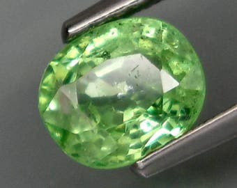 Top Apple Green Tsavorite Garnet Tanzania 1.21 ct