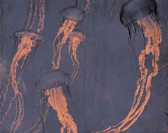 Monterey grey - Limited edition fine art print jellyfish home decor medusa beach nautical art