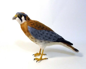 American Kestrel - Needle felted bird - Made to order