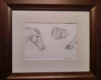 American quarter horse study.