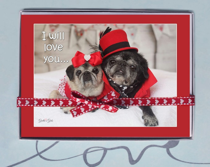 BOX OF 10 5X7 CARDS- I Will Love You - Funny Valentines Day Card