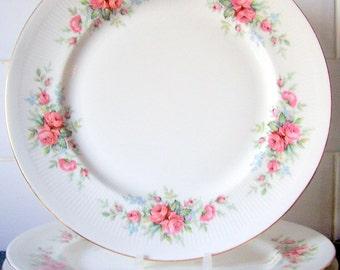 Royal Standard Rambling Rose Dinner Plate