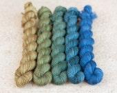 Hand Dyed Gradient Yarn Set - 100% Merino SW Fingering Weight Yarn - Single ply - 100 grams - 366m/400yards - Neptune