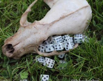 Medieval Betting Bone Dice