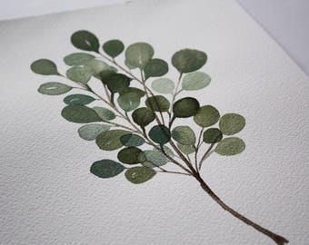 Eucalyptus Branch - Original Watercolor Painting