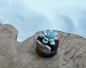 Succulents and Planter Clay Plants Handmade Gift Ideas Home Decor