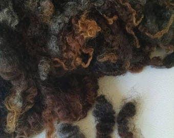 Gotland Wool -Doll Hair - Coopworth - Locks - Wool Locks - Spinning Fiber - Washed - Wool - Natural - Felting - Fleece - Local Organic Wool