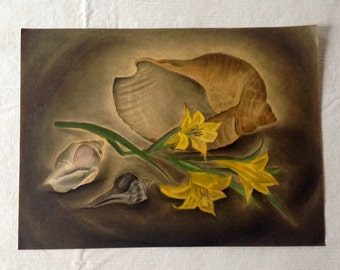 Original Watercolor of Sea Shells and Flowers by Edloe Risling