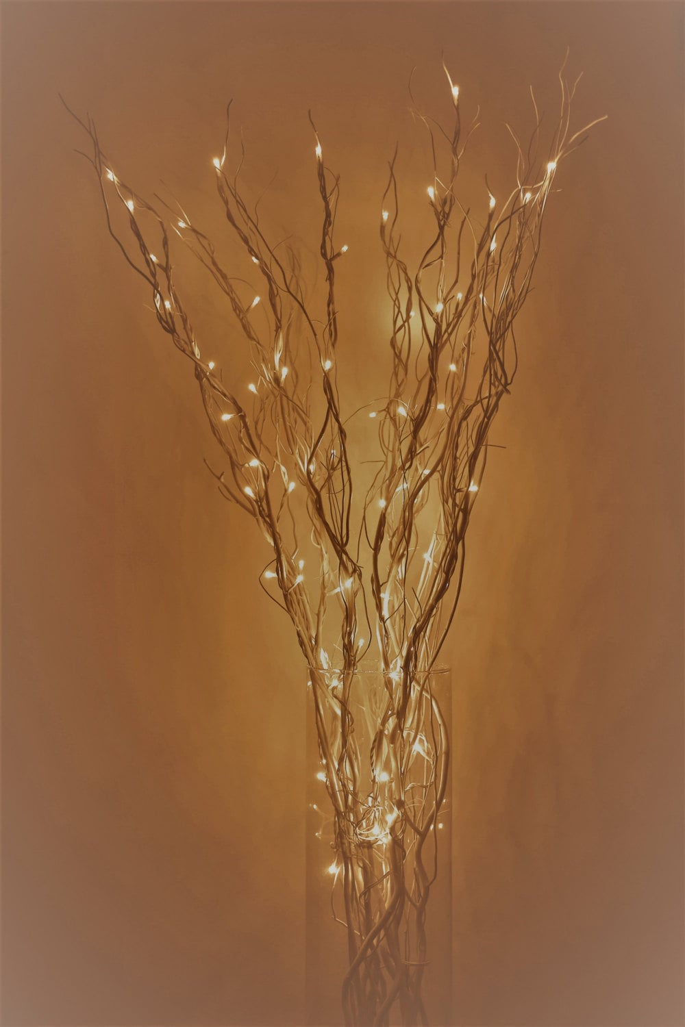 Led Lighted Curly Willow Branches Silver Gold Pearl Dark